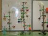 Novoletno obarvana kemija pri izbirnem predmetu poskusi v kemiji